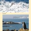 Papeles de Tierra y Mar - interior